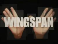 winspangraphic